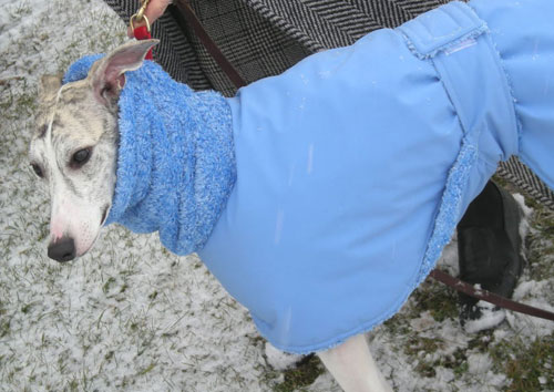 extra protection dog coat with high loft thermal fleece