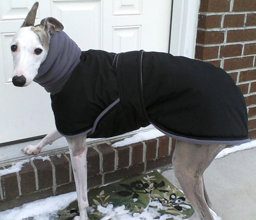 gray fleece dog winter coat