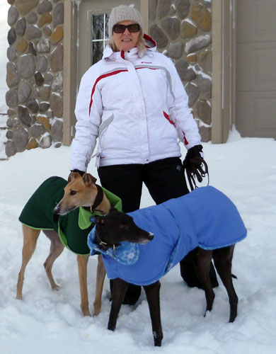 winter dog coats illinois